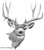 Mule Deer Ornament (Round)