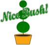 Nice Bush!