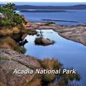 Acadia national park Thermos®