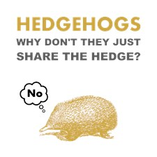 Hedgehogs Brown.png