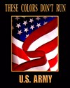 Army national guard Posters