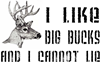 I Like Big Bucks
