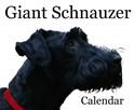 Giant schnauzer Puzzles
