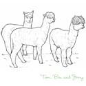 Alpaca Bags & Totes