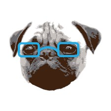 Cute Hipster Pug with Blue Glasses