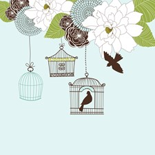 Modern Floral Design w Bird Cages n Love Birds Art