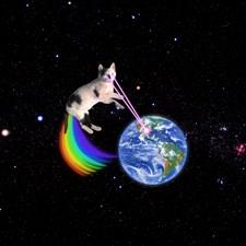 Space Cat Large