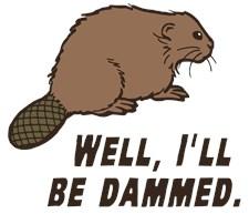 Dammed Beaver