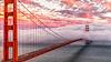 Golden Gate Bridge Large Thermos® Bottle