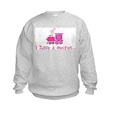 big sister apparel & gifts Sweatshirt