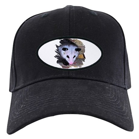 Virginia Opossum Black Cap