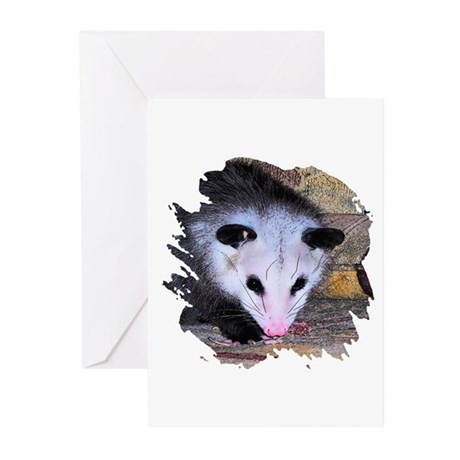 Virginia Opossum Greeting Cards (Pk of 10)