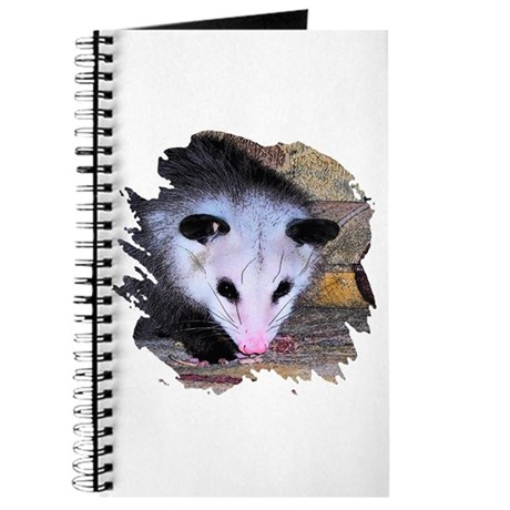 Virginia Opossum Journal