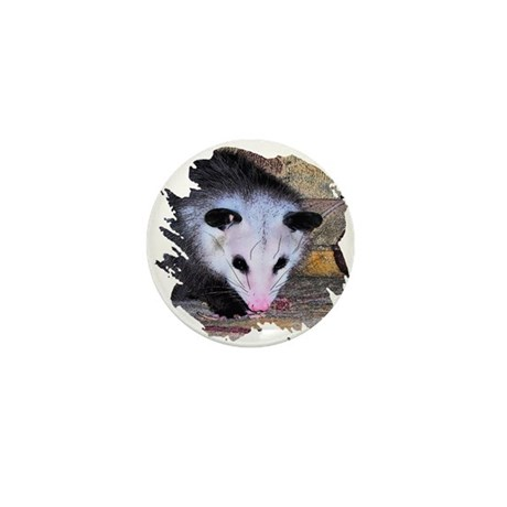 Virginia Opossum Mini Button