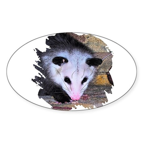 Virginia Opossum Oval Sticker