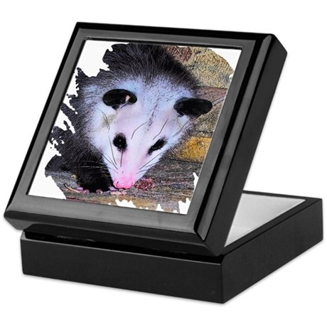 Virginia Opossum Keepsake Box
