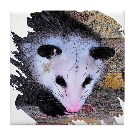 Virginia Opossum Tile Coaster