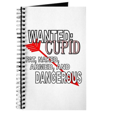 Wanted: Cupid Journal