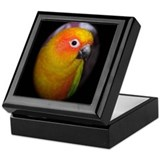 Cool Conure Keepsake Box