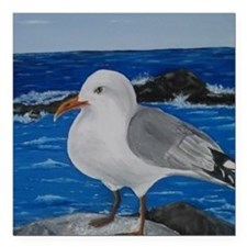 "Seagull Square Car Magnet 3"" x 3"""
