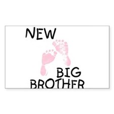 New Big Brother (pink) Rectangle Decal