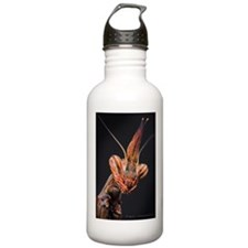 Visage Water Bottle