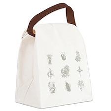 Vegetable Design  Canvas Lunch Bag