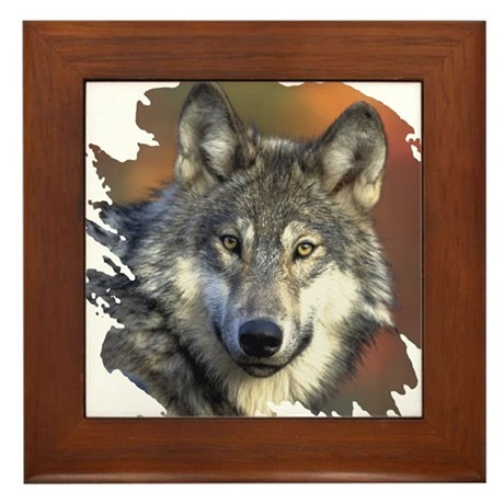 Gray Wolf Framed Tile