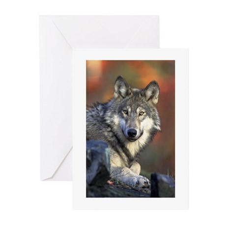 Gray Wolf Greeting Cards (Pk of 10)