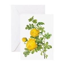 Vintage Yellow Roses by Redoute Greeting Card