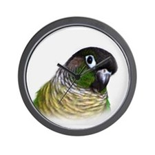 Green Cheek Conure.jpg Wall Clock