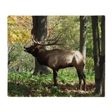 Elk bellowing Throw Blanket
