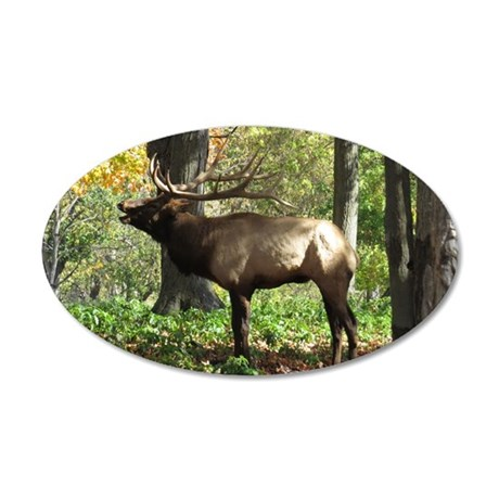 Elk Wall Decal