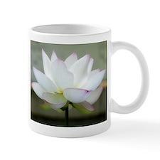 Lotus Mugs