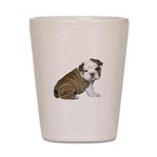 English Bulldog Puppy1 Shot Glass