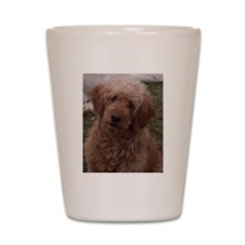 Golden Doodle Shot Glass