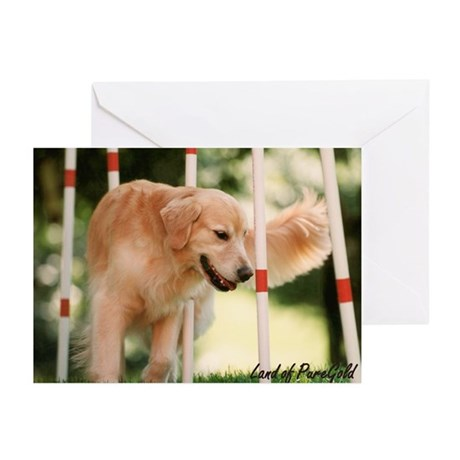 """Darcy: Love to Weave"" Golden Retriever Cards"