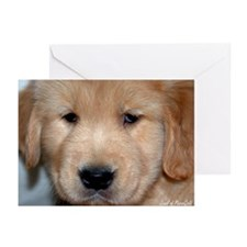 "Golden Retriever ""Fur Face"" Greeting Cards"