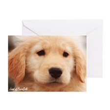 "Golden Retriever ""Teddy Puppy Pose"" - 6 Cards"