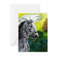 Spanish Barb Horse Greeting Cards
