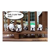 Bulldog Humor Postcards (Package of 8)