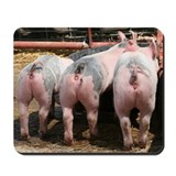 3 Pigs Mousepad