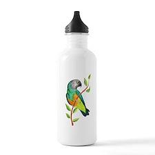 Unique Senegal parrot Water Bottle