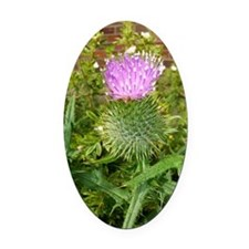 Thistle Oval Car Magnet