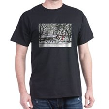 Horse Drawn Carriage in NYC T-Shirt