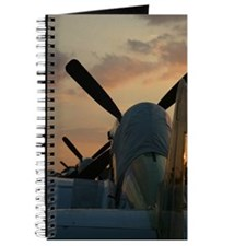 P-51 mustangs sunset Journal