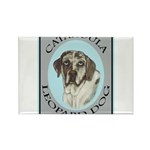 Catahoula Leopard Dog Rectangle Magnet (10 pack)
