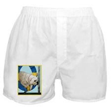 Bulldog Agility Design Boxer Shorts