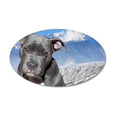 Blue American Pit Bull Terri 35x21 Oval Wall Decal