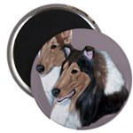 Smooth and Rough Collie Magnet